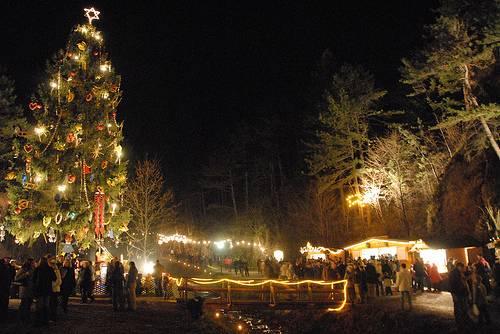 Ausztria legnagyobb feldíszített karácsonyfája 34c69a320a