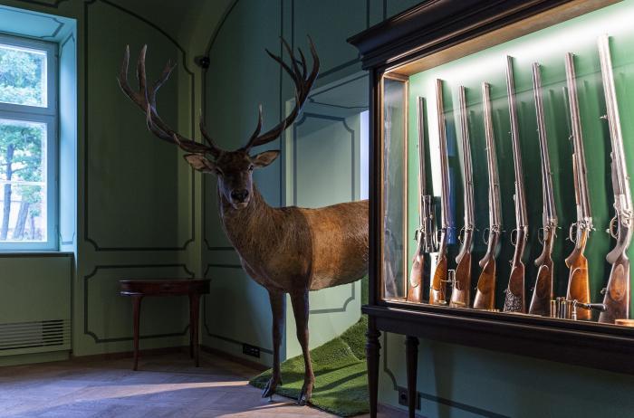 Látványos vadászkiállítással gazdagodott a bodajki kastély
